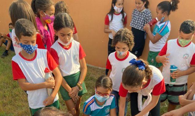 No Dia da Árvore, Secretaria de Meio Ambiente leva informações e conscientização à crianças de escolas municipais