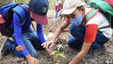 Estudantes participam de plantio de árvores nativas na nascente do Rio Queima-Pé