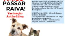 Neste sábado tem vacinação de cães e gatos em vários locais de Tangará da Serra
